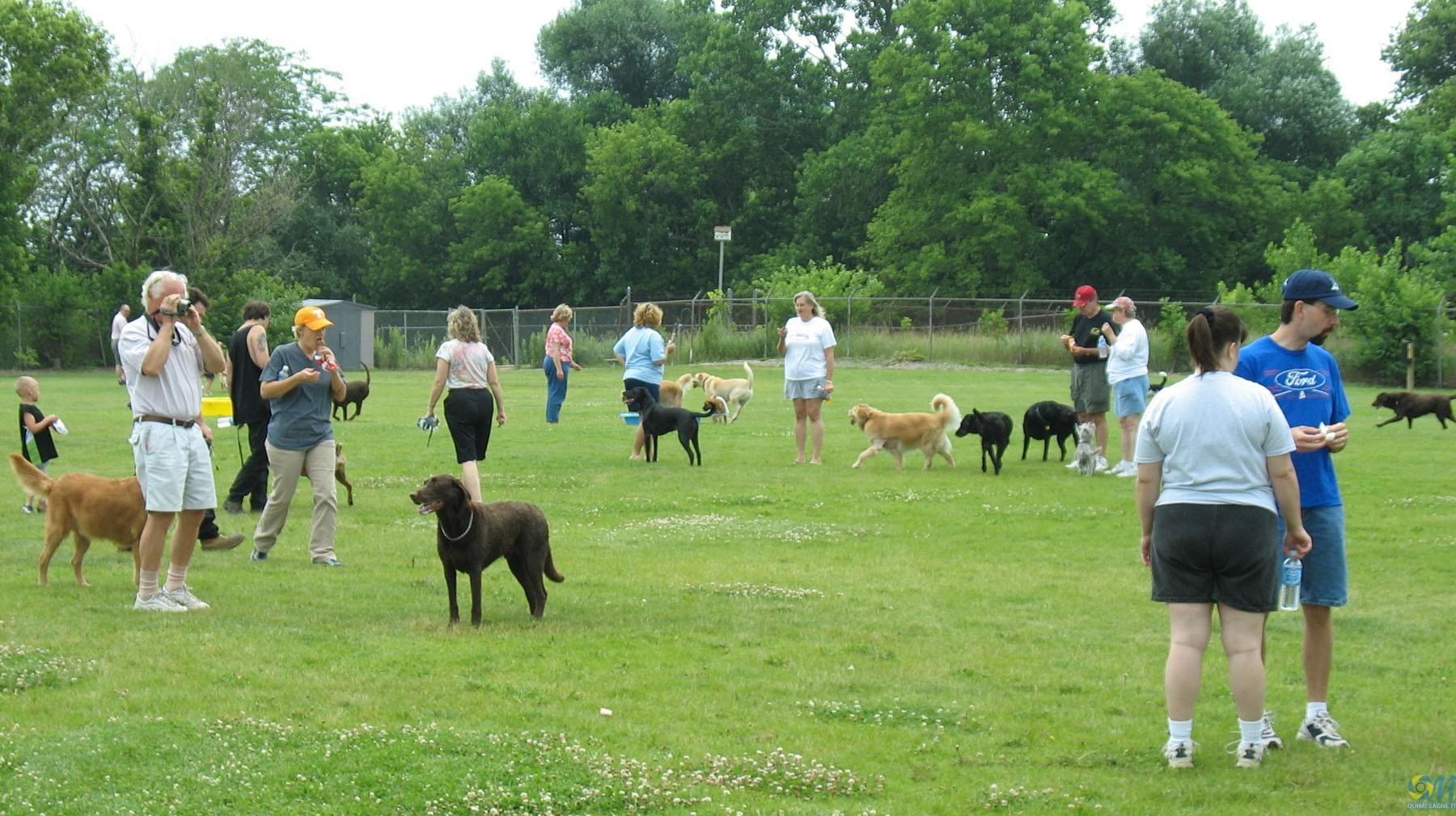 Il Dog Park? Meglio nel centro urbano