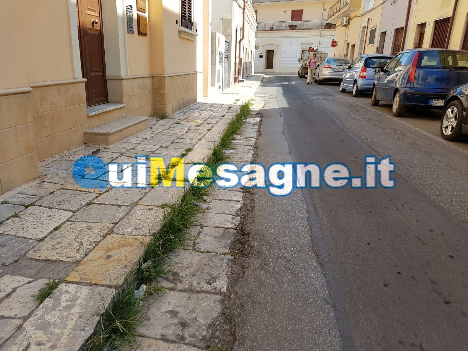 UFFICIO RECLAMI – Via Vittorio Veneto tra rifiuti, erbacce e blatte