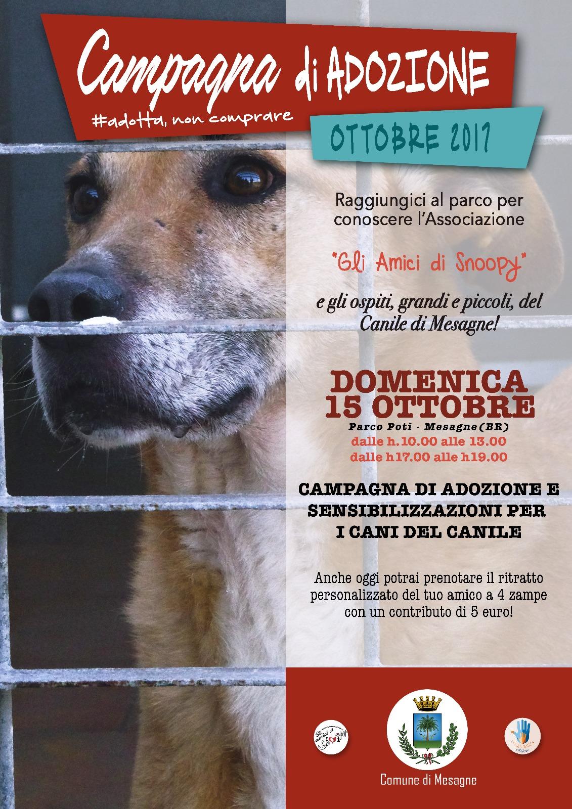 """Domenica 15 ottobre al parco Potì """"Gli amici di Snoopy"""" per l'adozione dei cani"""