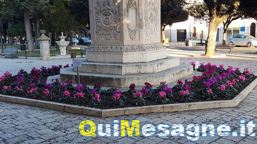 UFFICIO RECLAMI – Vietato attraversale le aiuole…e inviare mail al Comune