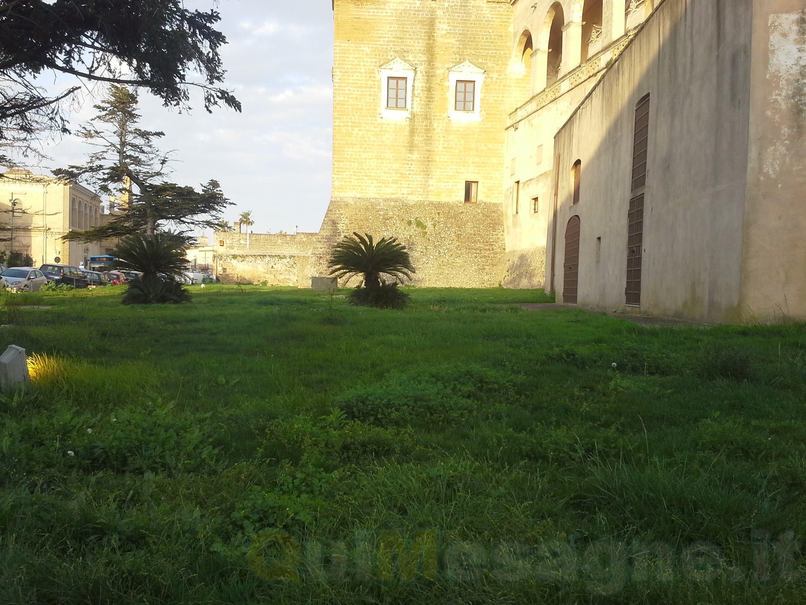 UFFICIO RECLAMI – L'erba cresce rigogliosa. In una settimana l'arrivo della nuova ditta