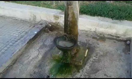 UFFICIO RECLAMI – Ecco le condizioni igieniche della fontanina di via Latiano – GUARDA VIDEO