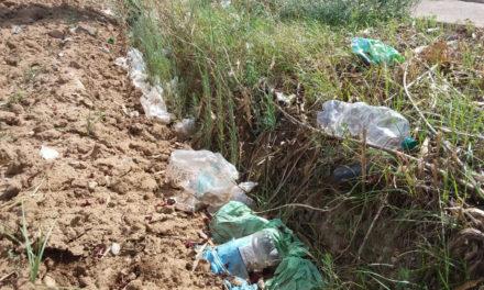 Raccolta volontaria di rifiuti in via Damiano Chiesa a Mesagne