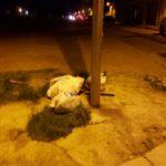 UFFICIO RECLAMI – Rione Zecchino abbandonato a se stesso e gli incivili aumentano