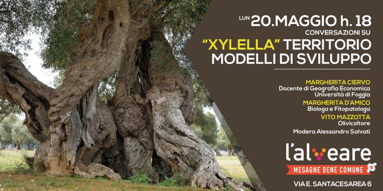 """L'Alveare Mesagne Bene Comune – Incontro su su """"Xylella"""", territorio e modelli di sviluppo"""